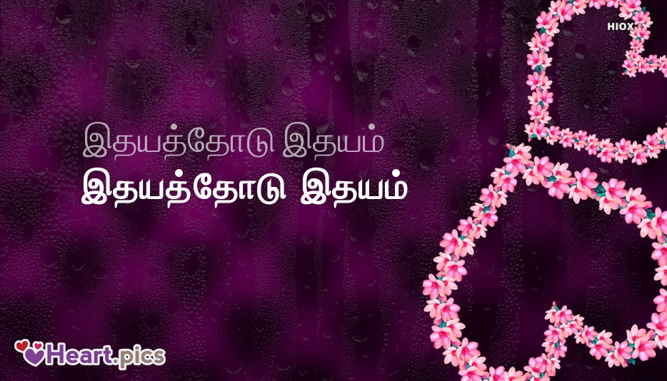 Tamil Love Heart Images, Pictures