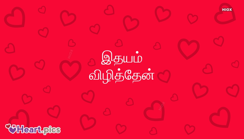 Different Languages Love Heart Images, Pictures
