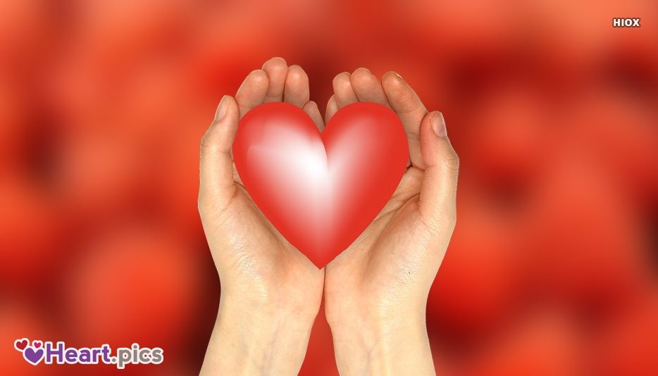 Hand Love Heart Images, Pictures