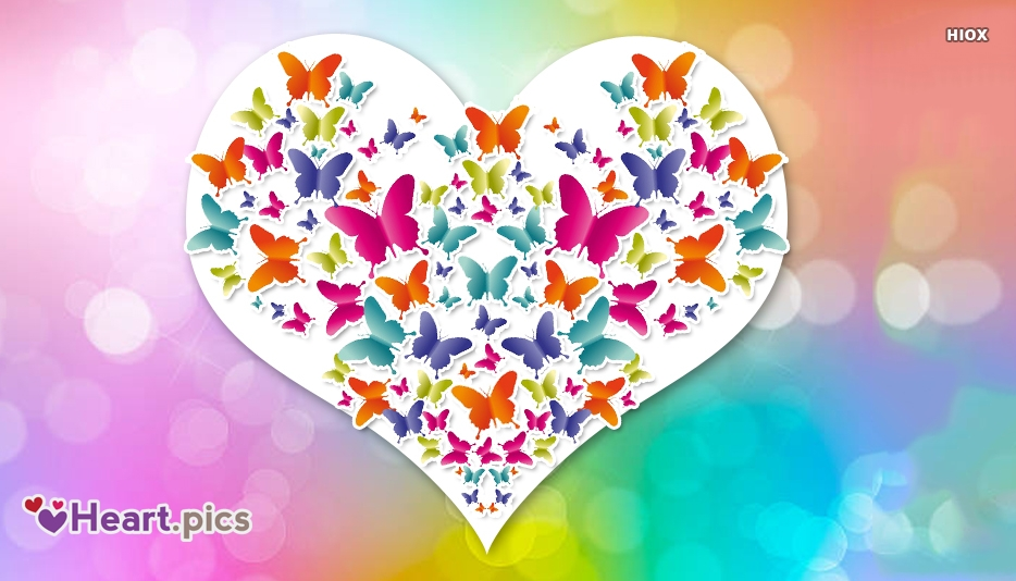Heart Love Butterfly
