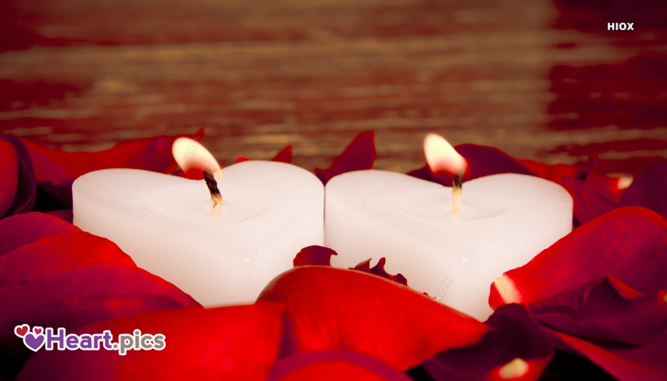 Love Heart Rose Petals Images