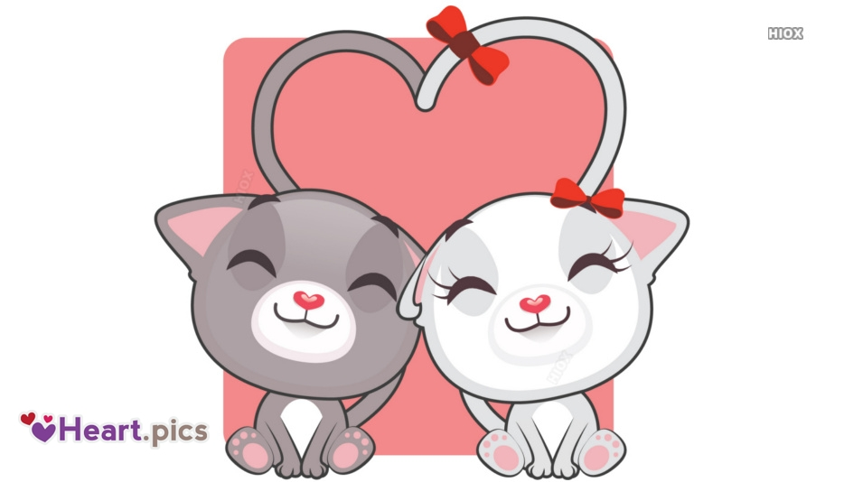 Heart Love Cat Images